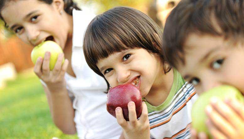Farm to Fork: la tracciabilità alimentare - Il Blog di ALYANTE